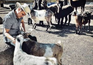 General Hospital (GH) Spoilers: Maurice Benard's Backyard Goat is the Absolute Boss